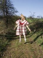 "project ""small dress"""