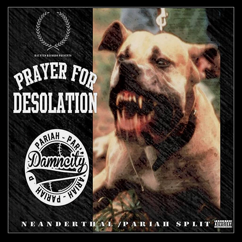 Prayer for Desolation/Damncity - CD Split