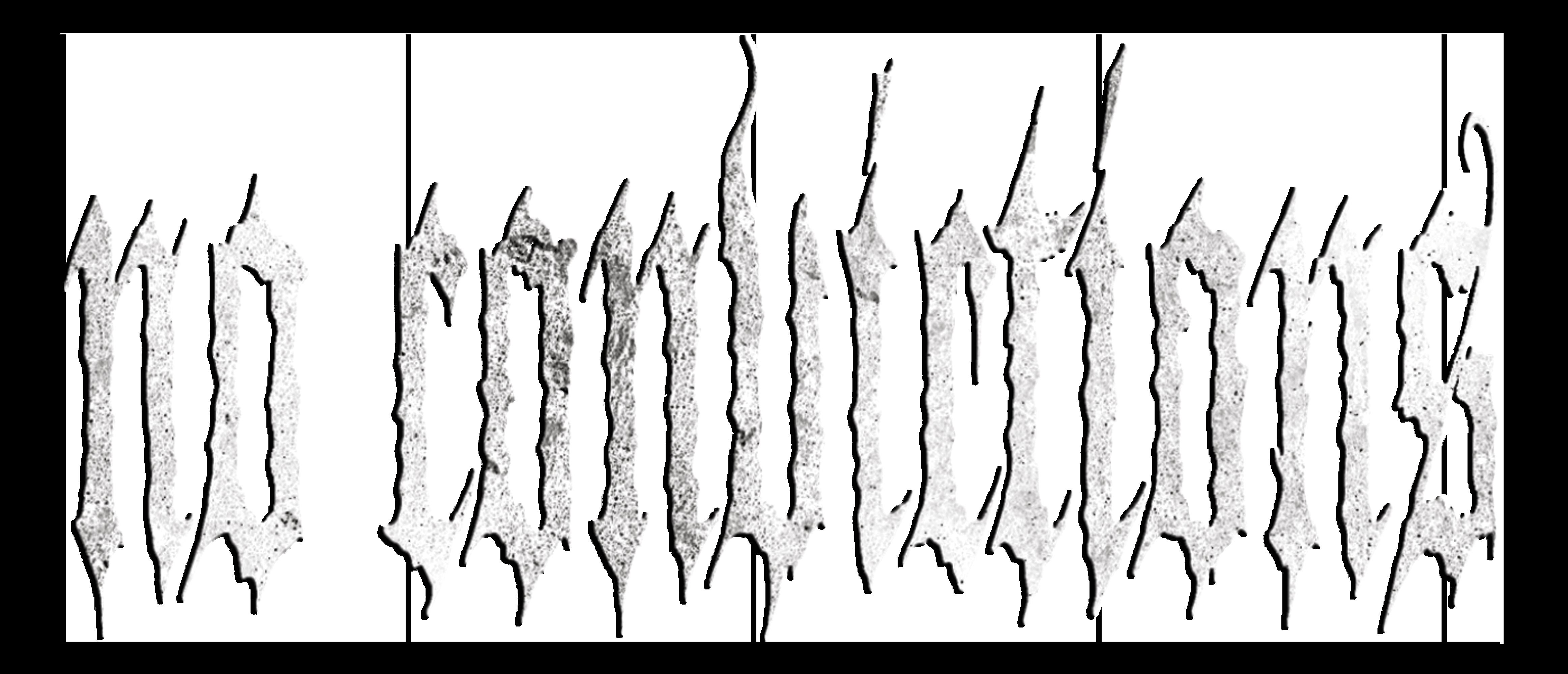 No Convictions Logo