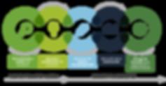 Fases Project_Azules y verde_Mesa de tra