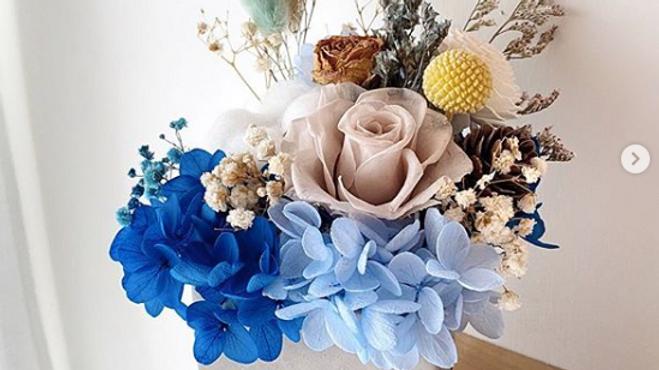 卡其玫瑰藍繡球水泥花盆