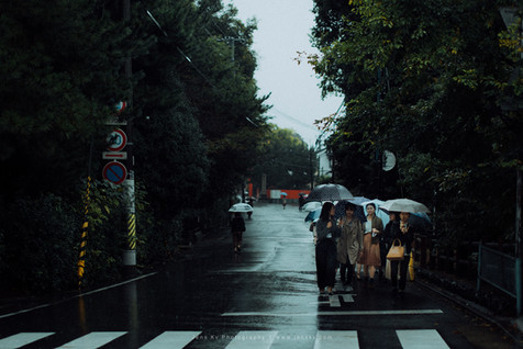 Kyoto in Rain (Travel, Wedding, Photographer, Malaysia, Singapore, Japan) - 11.jpg