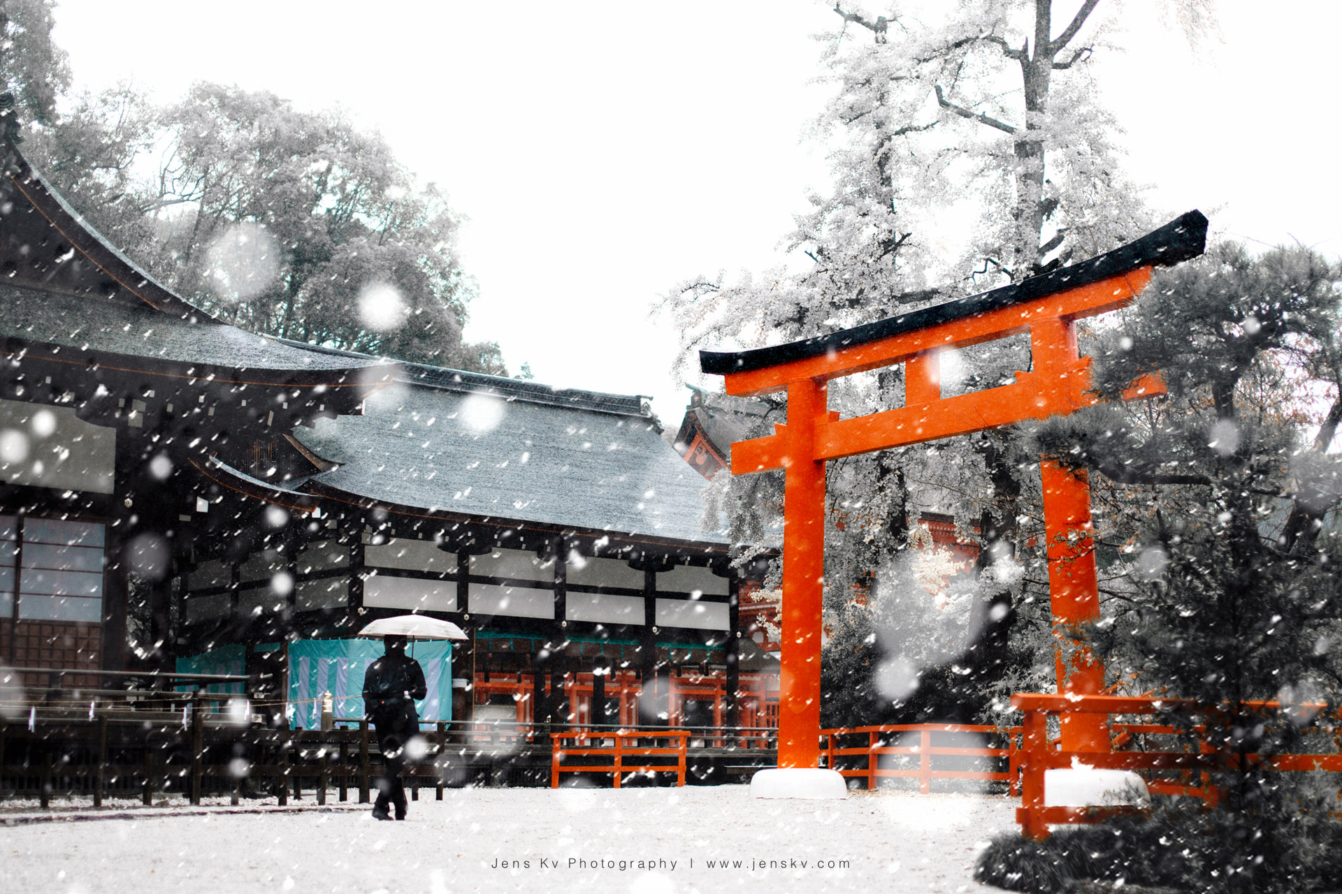 Red, Kyoto, Travel, Trip, Japan, Winter, Snow