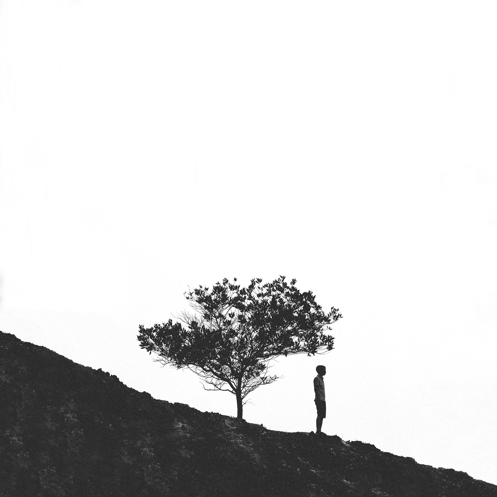 Taiwan Travel Trip Malaysia Kuala Lumpur Melaka Johor Photography Top Best  Photographer Puncak Alam Shah Alam Black and White Alone Tree Portrait