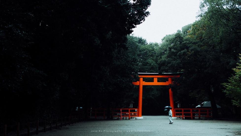 Kyoto in Rain (Travel, Wedding, Photogra
