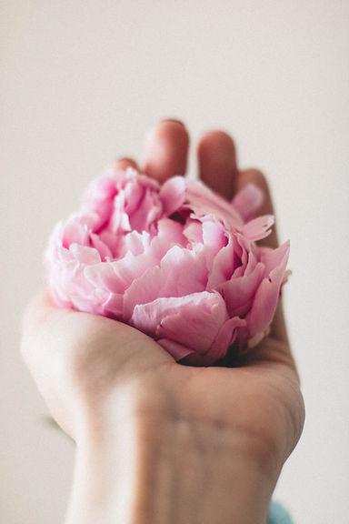 bloom-blossom-flora-1460833.jpg