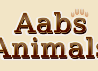 Aabs Animal