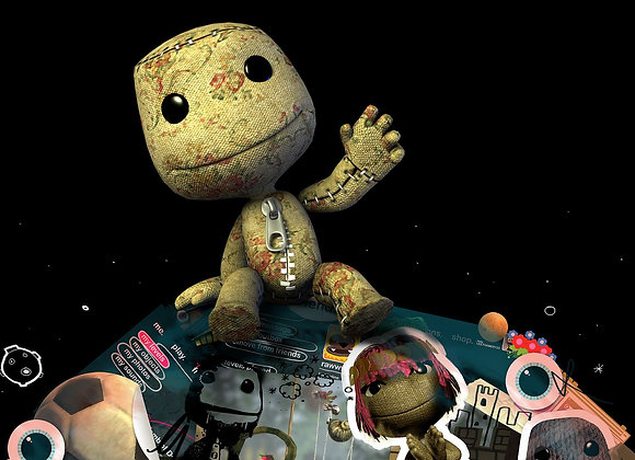 LITTLEBIGPLANET COLLECTION