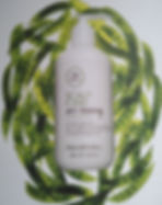 ALCHIMIA HAIR AND BEAUTY SCALP CARE TEA TREE PAUL MITCHELL