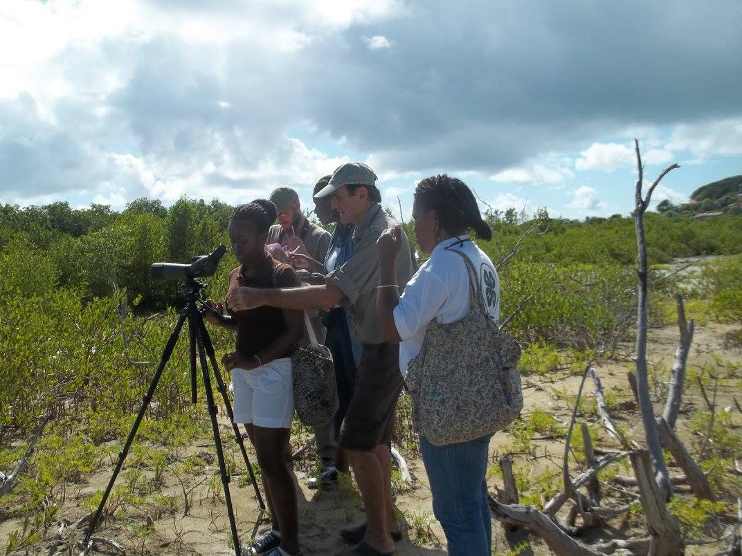 Field trip to Petit Carenage Bird Sanctuary.