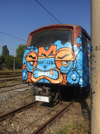 sofles_legal_train.jpg