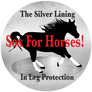 sox for horses logo.png