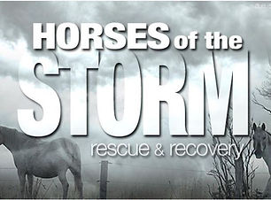 Horses of the Storm graphic.JPG