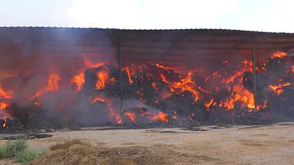 burning hay.png