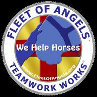 Fleet of Angels SEAL- light blue nose.pn