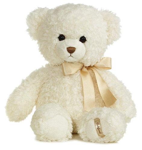 Teddy Bear w/ Book (Combo)