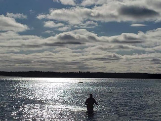Chilly swim, St Lawrence 1C