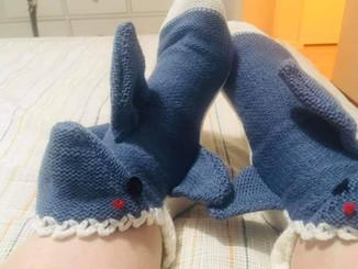 Sharkie socks