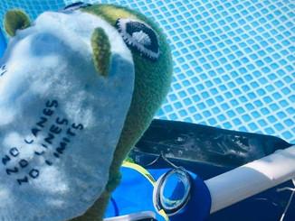 Virtual Dandy - 3.6 miles of swimming