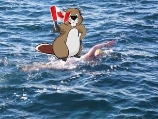 Cheerful beaver on my butt