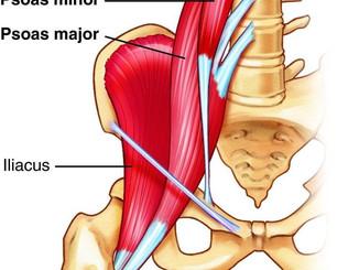 Rehab: psoas, illiac, hip flexor