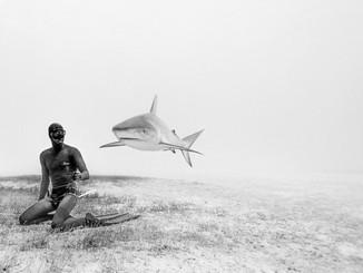 Freediving couple who make stunning underwater photos