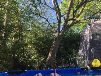 Virtual Dandy - 8km of swimming