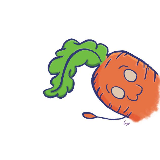 Hi Carrot