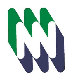 MIZRACHI bank  (proposition)