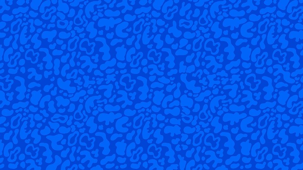 patterncheetah.png