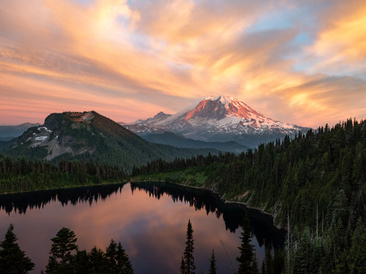Top 10 Most Scenic National Forests