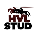HVL STUD logo