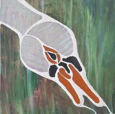 Swan head £55