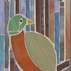 Quetzal (female) £80