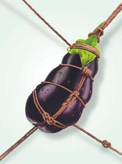 Eggplant_shibari-Low.jpg