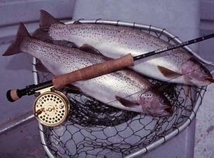 A2 Fishing 1.jpg