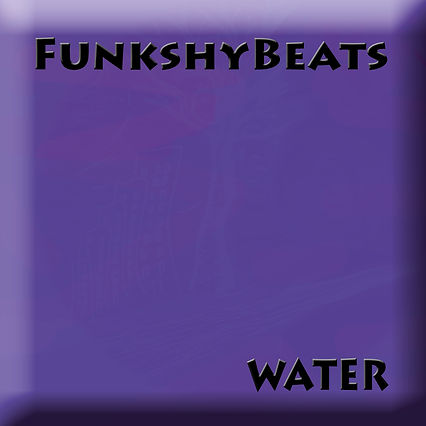 FunkshyBeats 4th Release 06.jpg