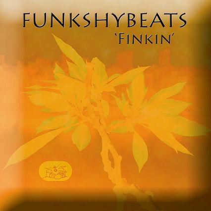 FINKIN 01.jpg