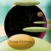 Different Fing:Funkstepping 019.jpg