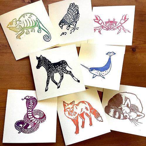 Technicolour Animals - square card bundle PACK OF 4