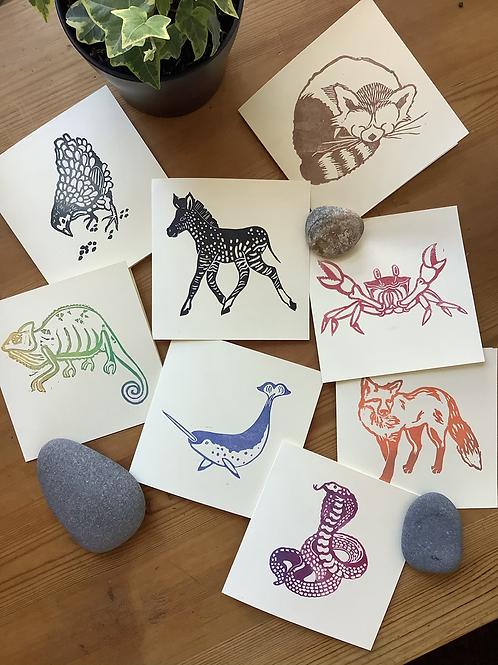 Technicolour Animals - square card bundle PACK OF 8