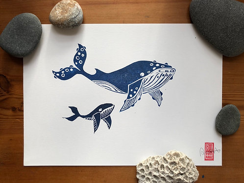 Whale of a Time A4 print