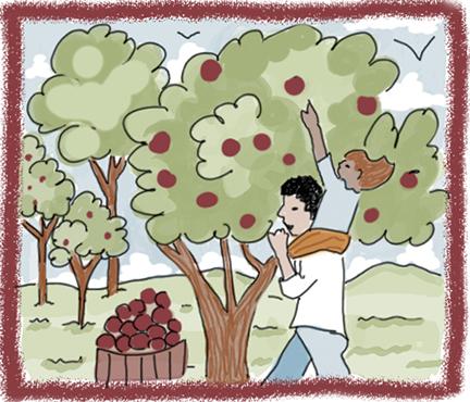 orchard-copy.jpg