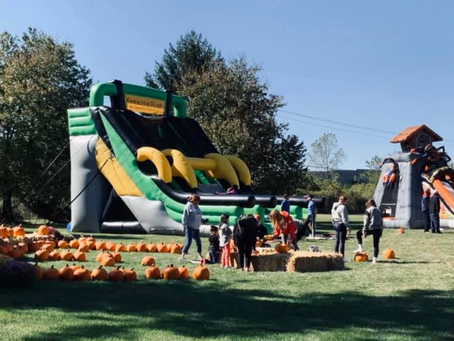 Plan the Ultimate Harvest-Themed Party with Your Very Own Pumpkin Patch!