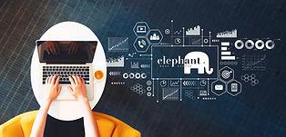 marketing elephant.jpg