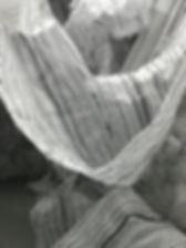 IMG-2008.JPG