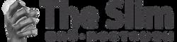 ПАБ - Логотип_название в строку_gray_sma