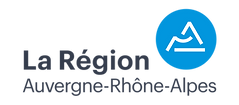 Logo_RegionARA_Partenaire_typo-gris-past