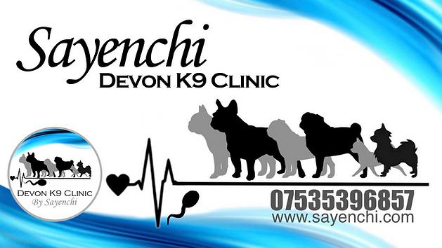 Devon K9 Clinic Banner.png