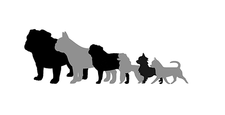 Sayenchi Dogs.png